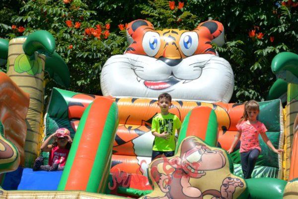 locacao-de-brinquedos-toboga-tigre