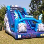 festa-infantil-toboga-frozen-2-2